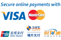Secure online payments